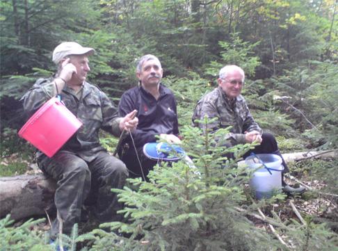 Гриби в карпати 11 09 по гриби в карпати